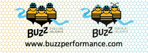 Buzz Performance